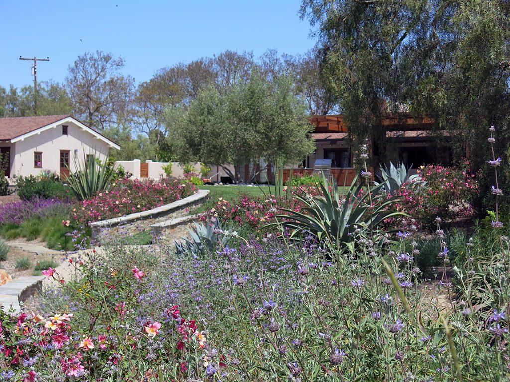 residential designer landscapes