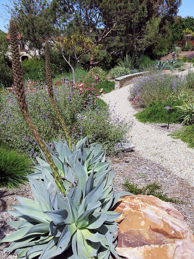 designer residential landscaping