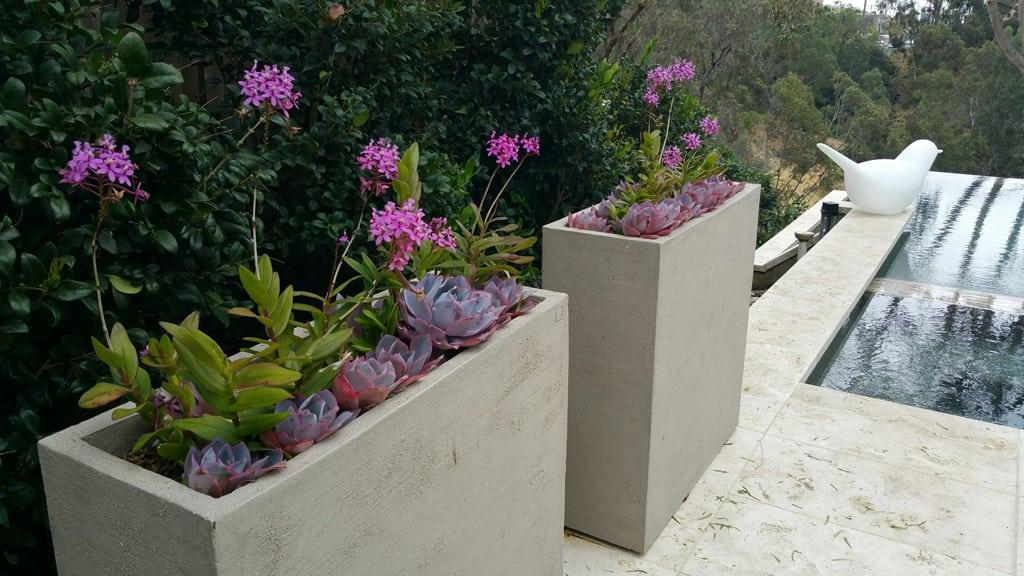 custom designer landscaping